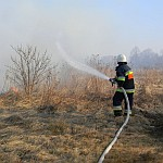 pożar traw