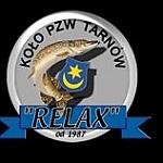Zawody wędkarskie koło PZW Relax Tarnów